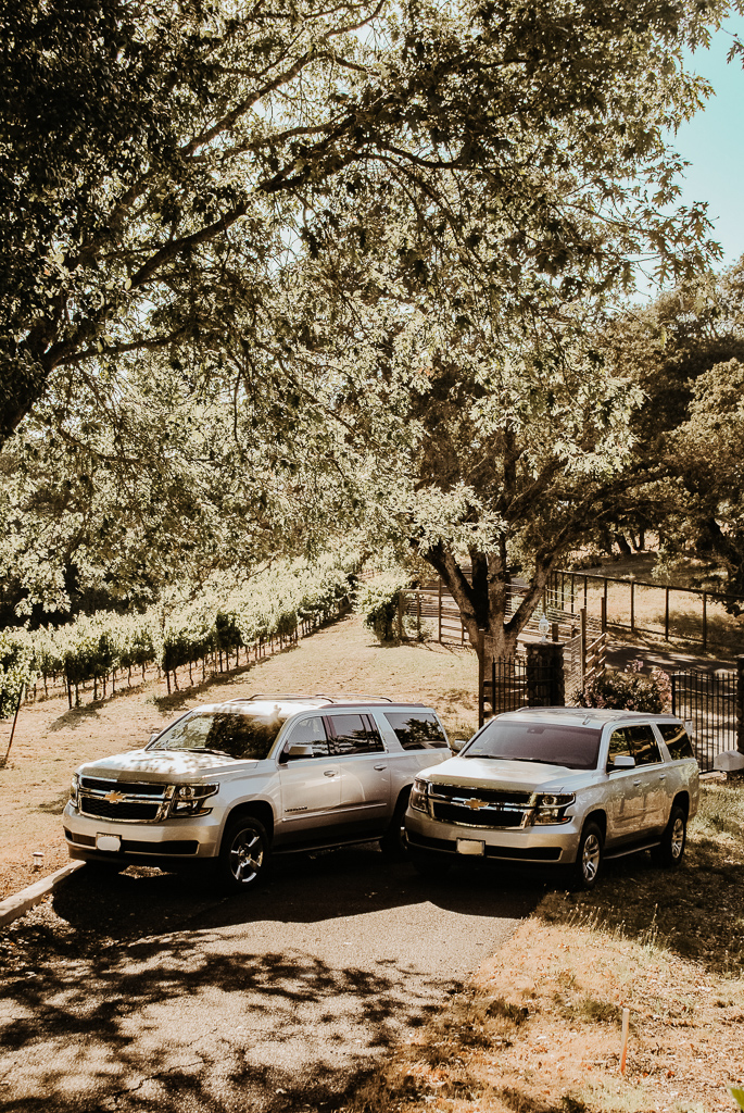 2 tour vehicles in the vineyard